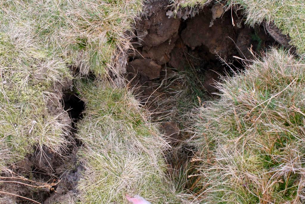 LFC_eroding hole _Lores